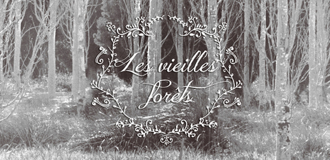 Logo - Les viellies forêts - Estilismo - Mireia Mullor