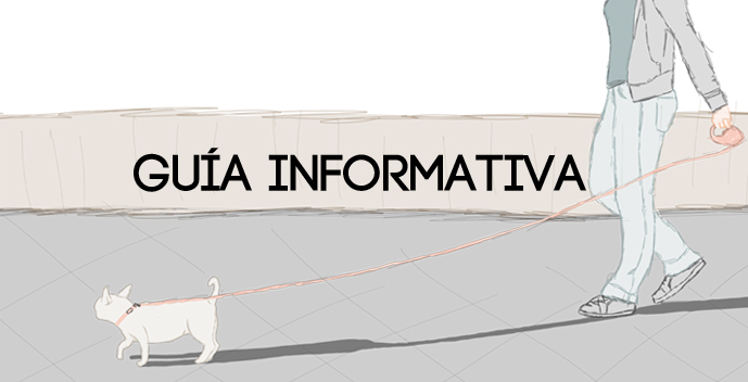 Guía informativa - Vedama -  Diseño gráfico